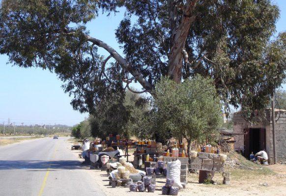Импровизированный рынок под эвкалиптом в израильской глубинке.