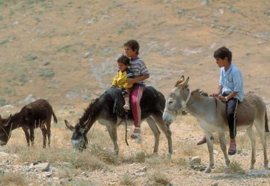 Бедуинские дети.