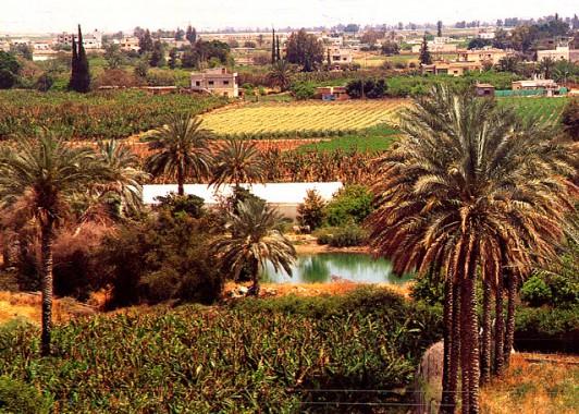 jericho-oasis
